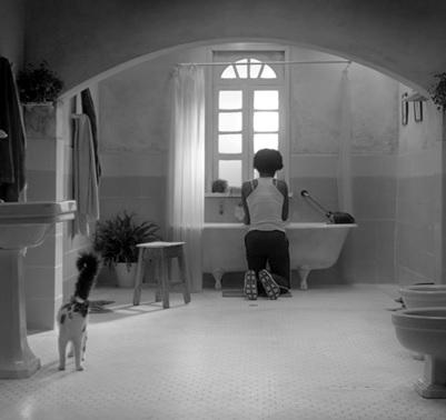 """El Cortometraje colombiano """"Corteza"""" premiado en el Filmschoolfest Munich 2016"""