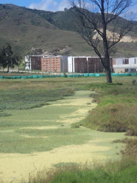 La CAR impone millonarias multas a dos empresas por contaminar el Humedal El Vínculo en Soacha