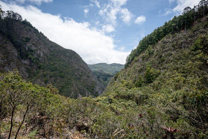Los cerros orientales: El emblema de Bogotá
