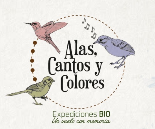 """""""Expediciones BIO: Alas, Cantos y Colores"""", la historia de la avifauna se renueva un siglo después"""