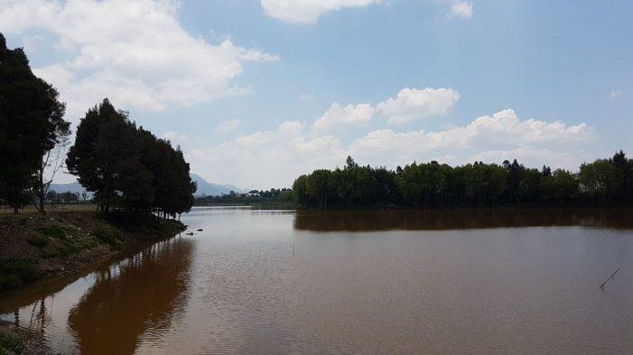 """""""Proteger los humedales es cuidar la fauna y flora del territorio"""": CAR"""