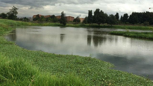 Estado de los humedales de Bogotá