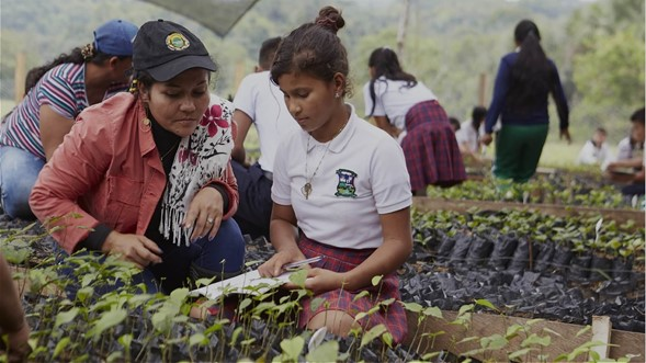 Estas son las ideas preseleccionadas que solucionarían retos climáticos en Colombia